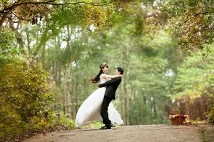 Wedding Photo~Pixabay