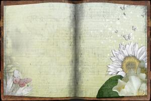 journal-431912_1920