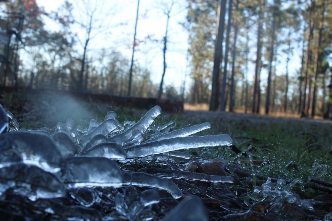 icy morning-1