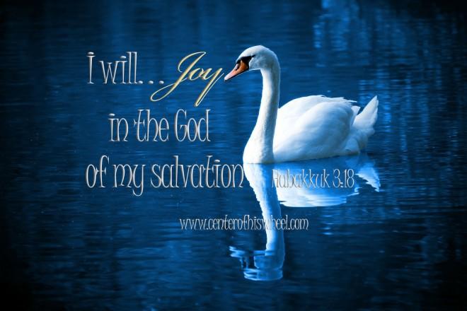 I will joy Swan