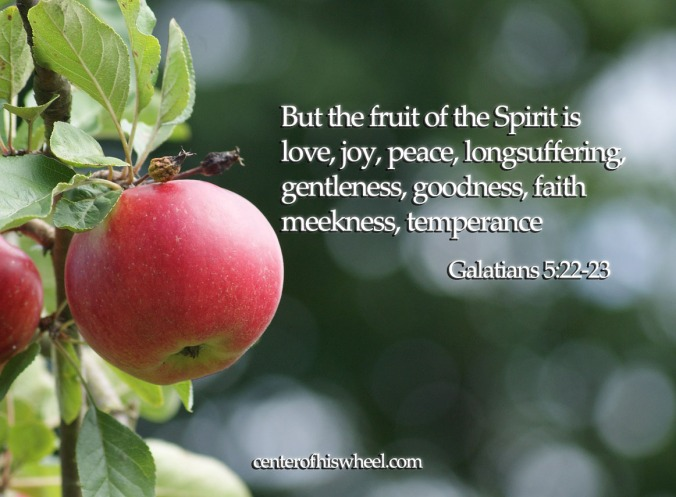 But the fruit of the Spirit is love Center of His Wheel Blog