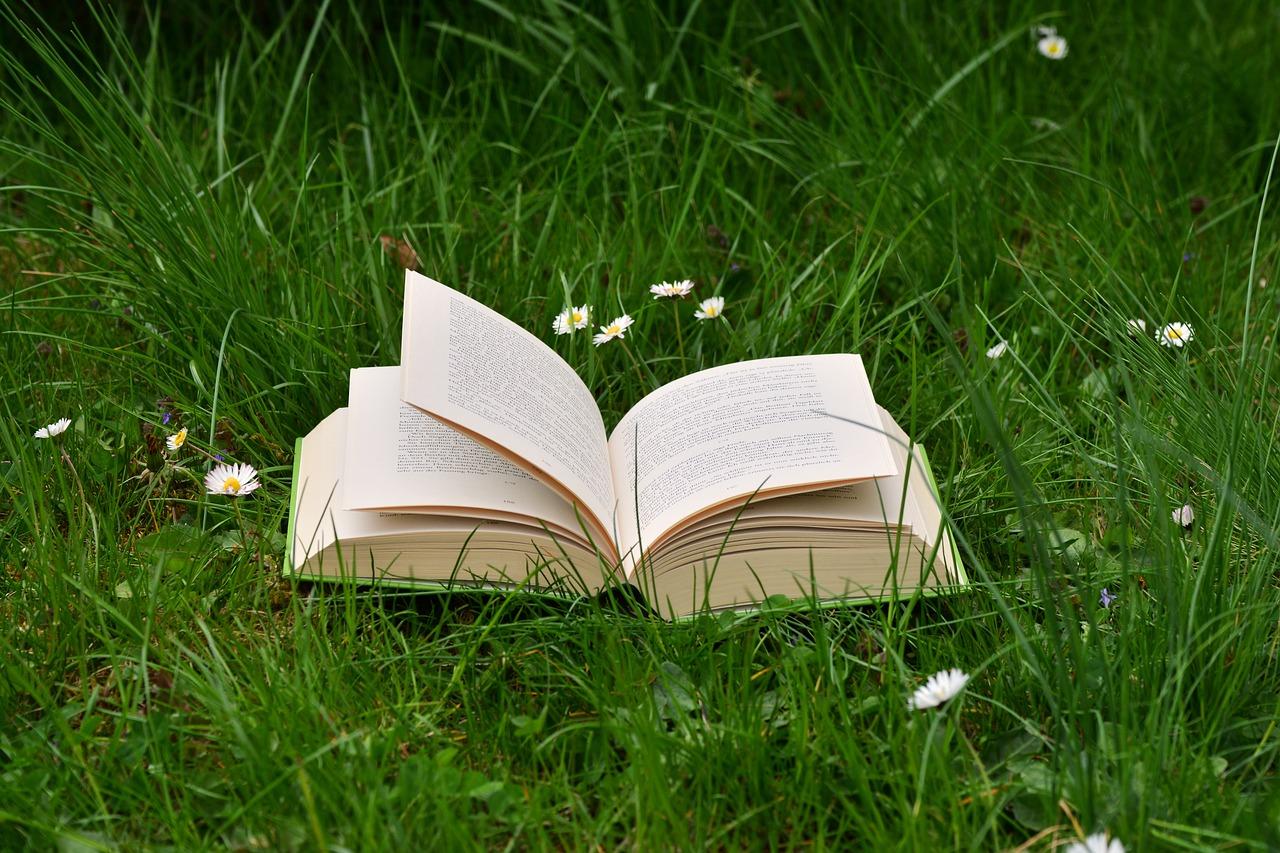 book-2224934_1280