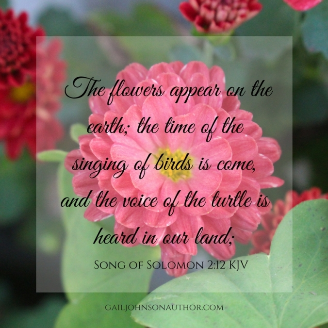 For, lo, the winter is past, the rain is over and gone; The flowers appear on the earth; the time of the singing of birds is come, and the voice of the turtle is heard in our land;.jpg