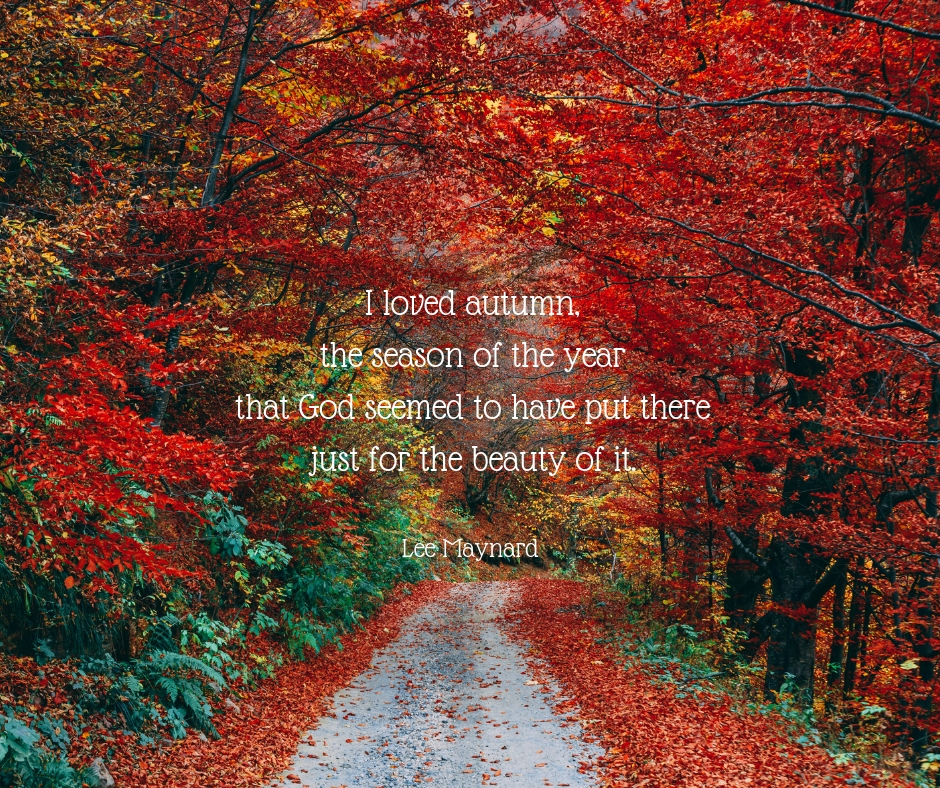 I loved autumn, the season of the year that God seemed to have put there just for the beauty of it